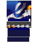 Electronic badge